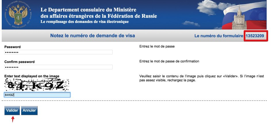 Le remplissage des demandes de visa électronique Russie 2